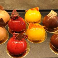 MousseTörtchen-Reihe (von links nach rechts): PralineHaselnuss, HimbeerSchokolade, MangoCassis, Mousse au Chocolat